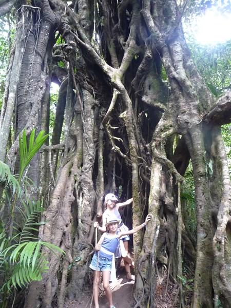 Bali en famille-lac Tamblingan