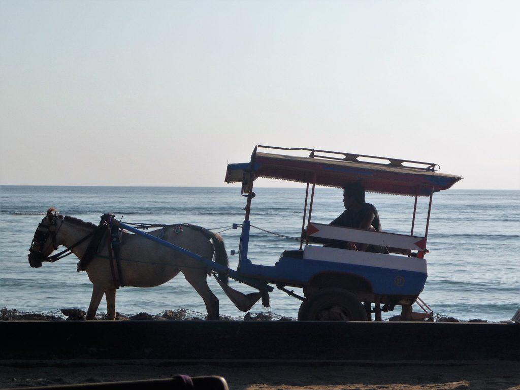 Iles Gili - Bali en famille