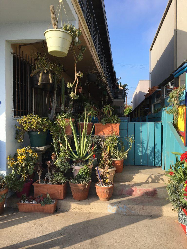 Venice Beach - Vacances en Californie en famille