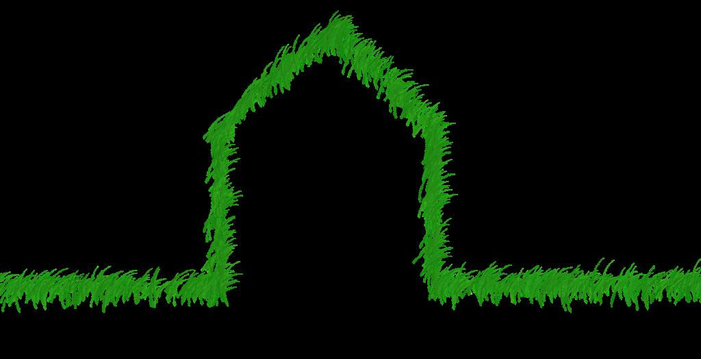 Les 2 produits écologiques indispensables au nettoyage