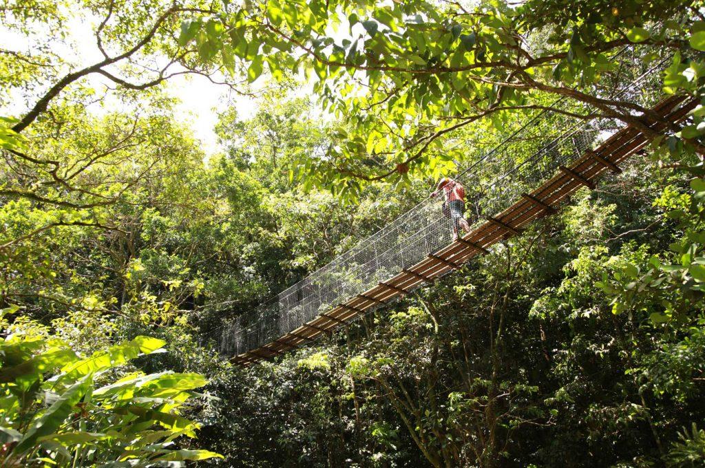 parc-des-mamelles-zoo-guadeloupe