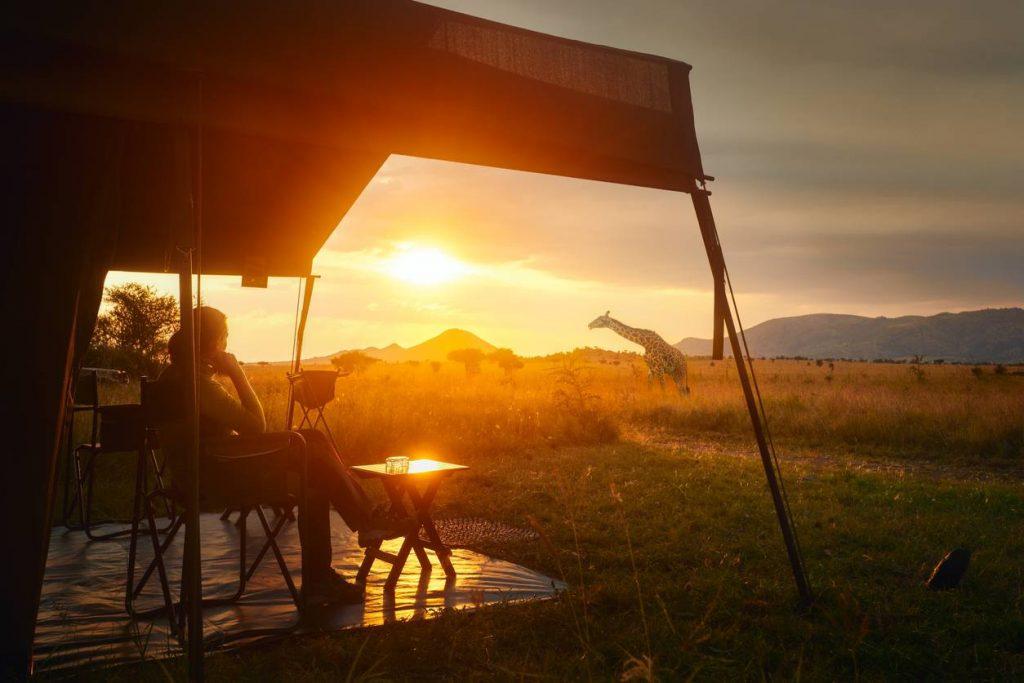 camping pleine nature chaise