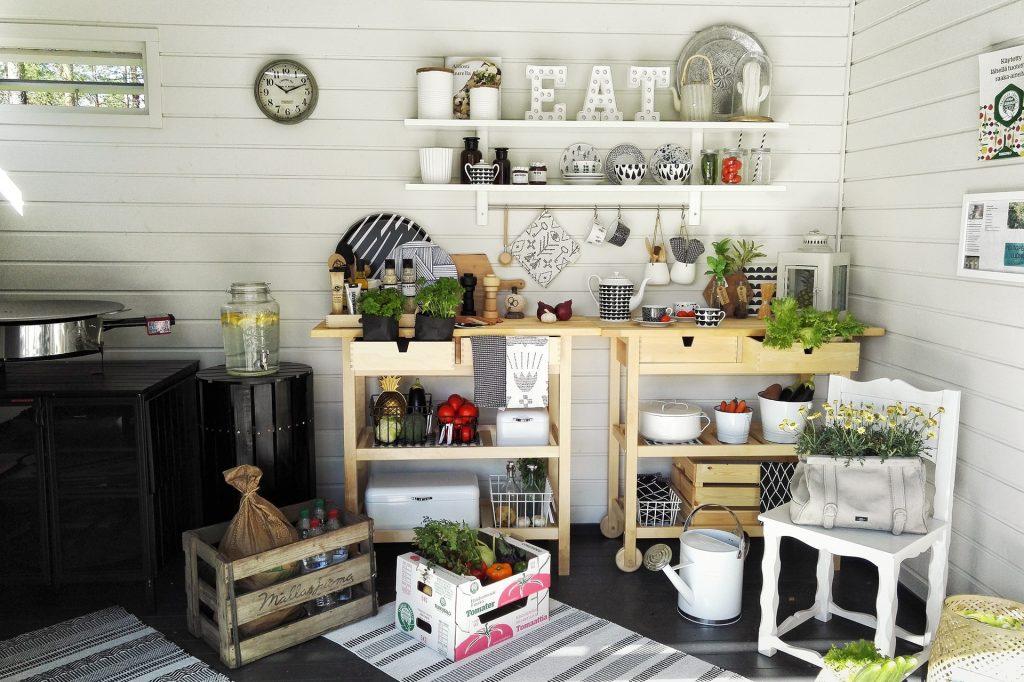 Les 5 plantes (utiles) à avoir chez soi