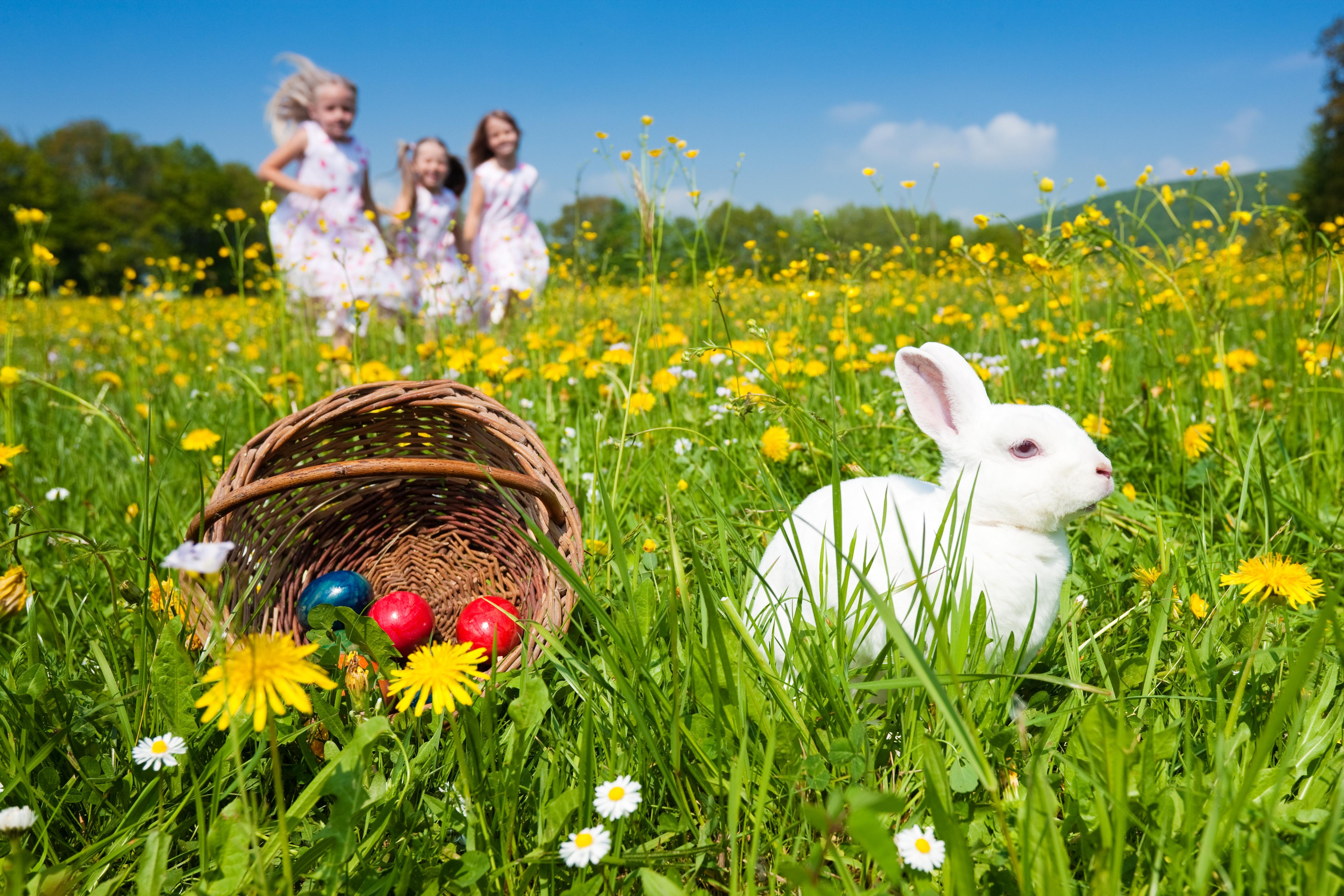 Où faire la chasse aux oeufs de Pâques en France ?